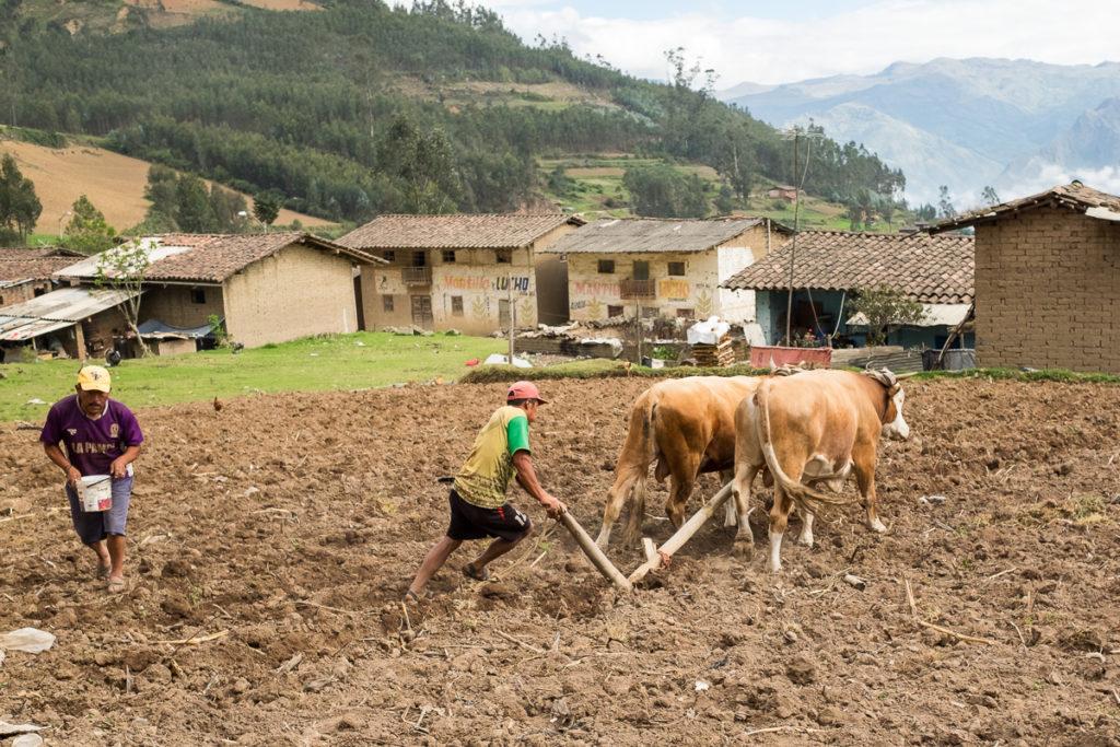 Fotografia di reportage - A La Pampa si semina così